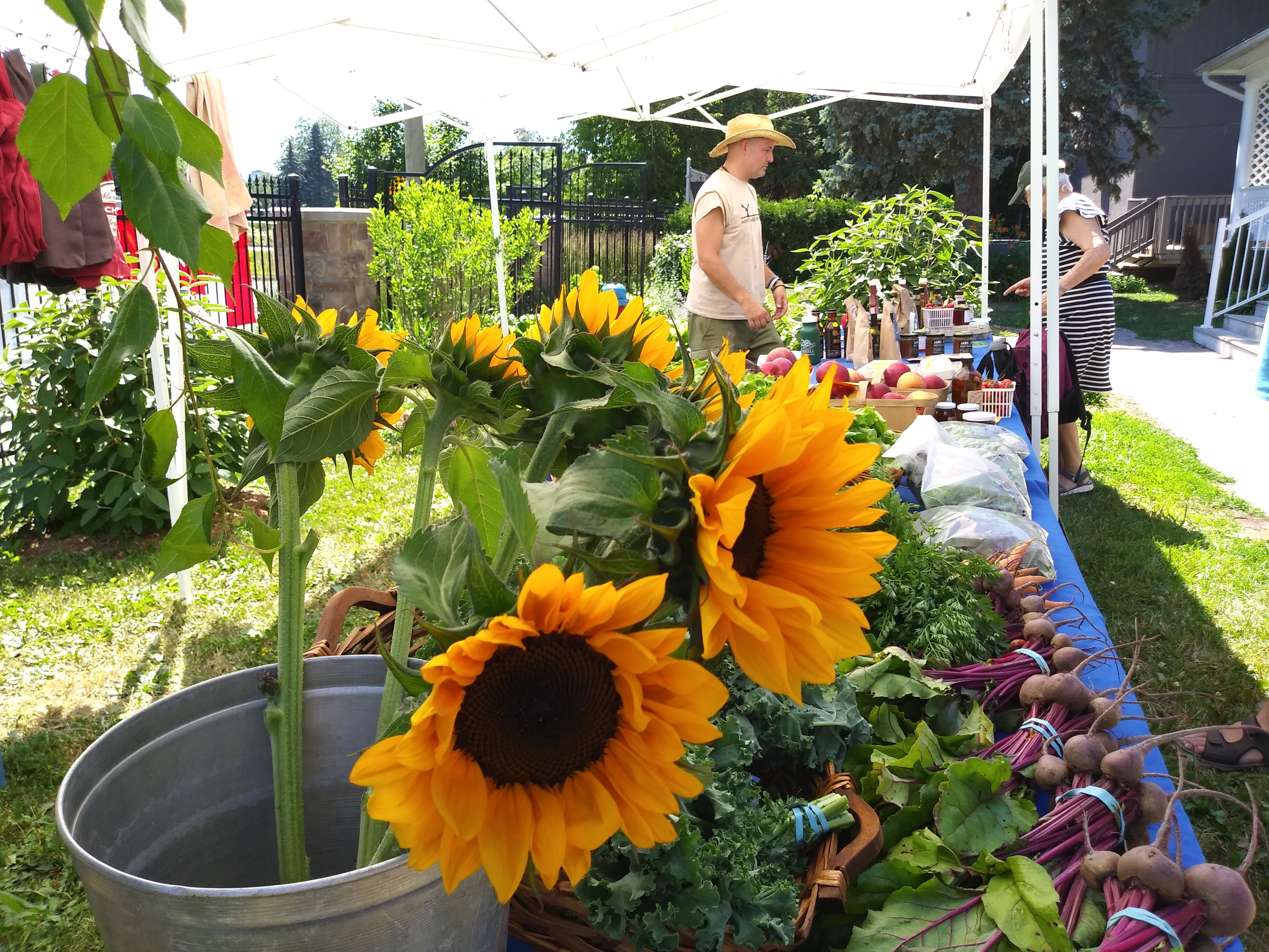 The importance of farmers' markets as food distributors