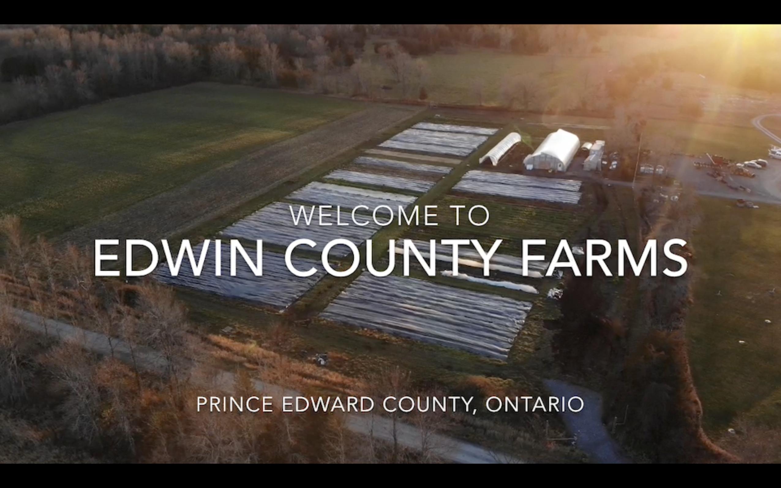 Farm Promo Video
