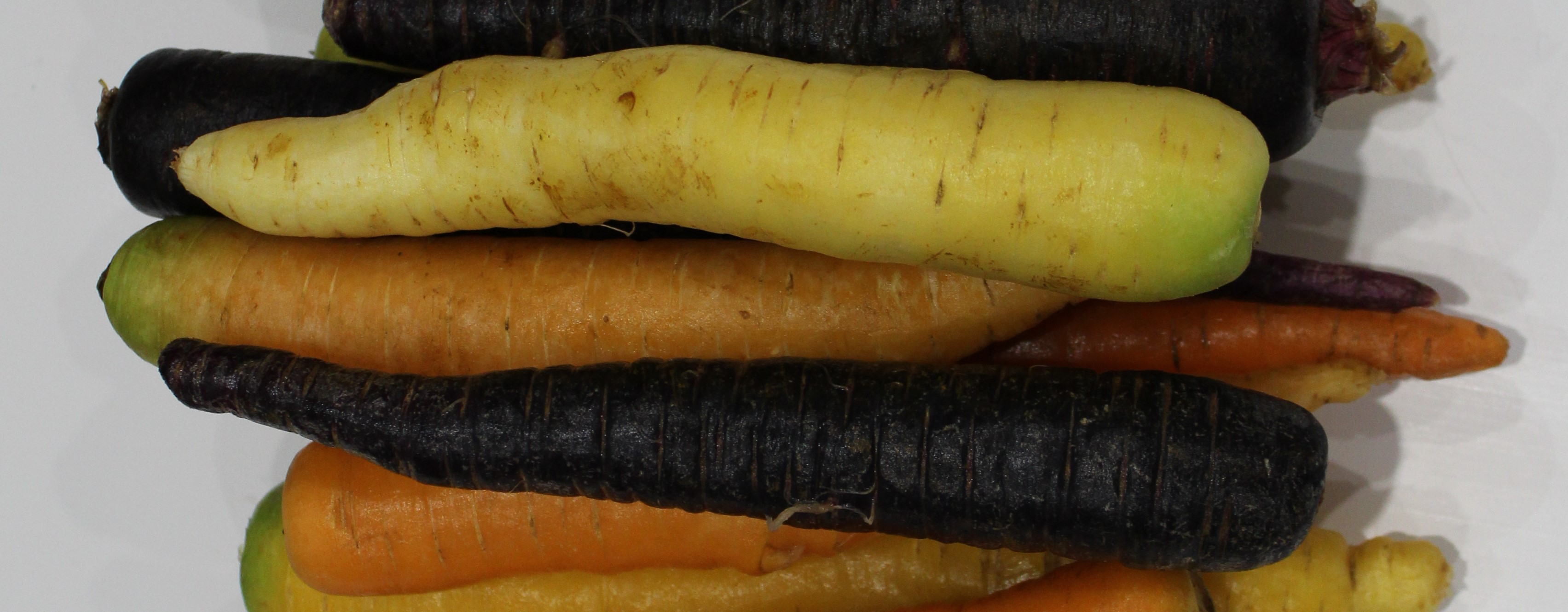 Why Are Rainbow Carrots So Good For You?